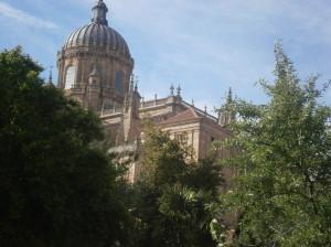E guardate! Dall'orto si vedeva anche la spettacolare Cattedrale!